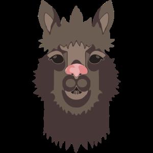 Alpaka dunkelgrau
