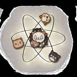 Katzen Atom Wissenschaft Nerd Physik Shirt