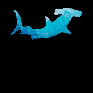 Hai Geschenk Hammerhai Fisch Meer Sohn Zoo Kontur