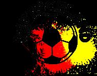 Fan-Shirt: Deutschlandfussball