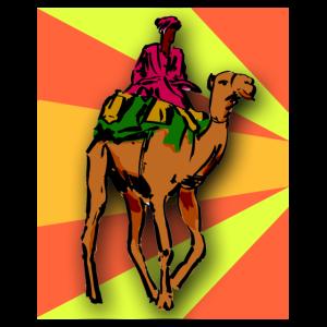 Kamel Reiter Wüste Tier Tiere Natur Sahara Camel