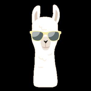 Lama Sonnenbrille Sommer Strand Trend Geschenk