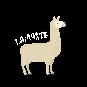 Lamaste Lama Yoga Indien Geschenk