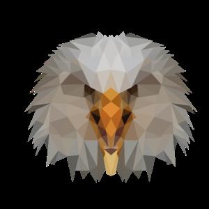 Adler Polygon Vogel Tier Wappentier Geschenkidee