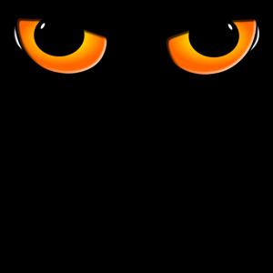 Katze Augen Katzenaugen Katzenliebhaber Katzendame