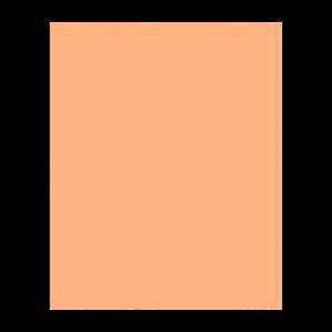 Struktur Braune Form
