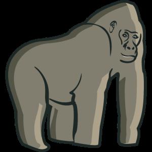 Menschenaffe Gorilla