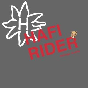 Hafi-Rider / Haflinger / Pferd / Pony