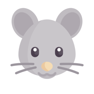 süße graue Maus