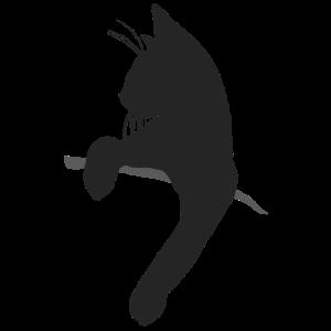 Witzige Katze in Tasche