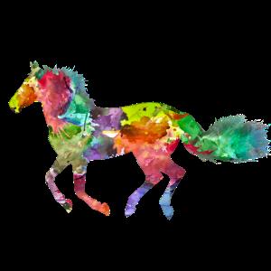 Pferd Farbe