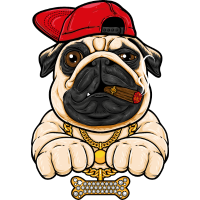 Cool Dog -Hund mit Hut und Bling