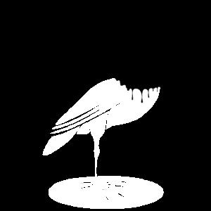 Pechvogel, Vogel, Pech, Schwarz, Farbkleckse
