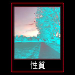 Polaroid Foto Asian Blue
