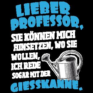 Lieber Professor