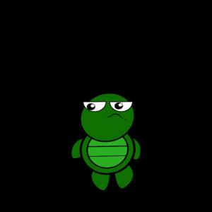 Schildkröte zu spät