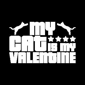 Valentine cat, my cat is my valentine