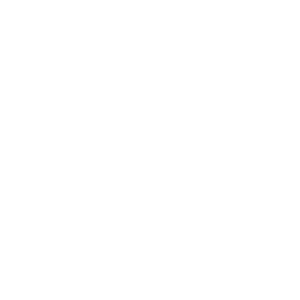 Digitaler Nomade unterwegs mit Kamel-Karavane