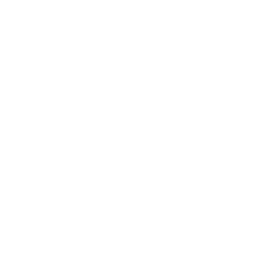 Lustiges Grill und BBQ Shirt Evolution