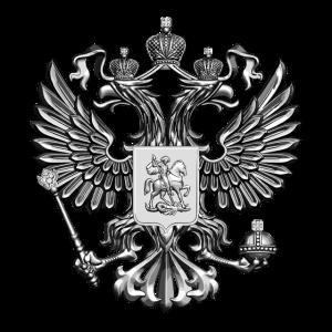 Russland Wappen Adler Wappentier Patriot silber