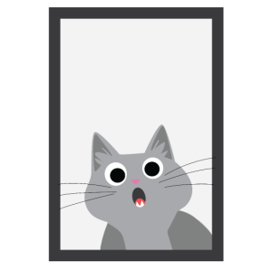 Spiegel Katze | Katze Spiegel Erschrocken