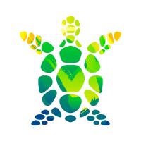 Turtle Watercolor Design