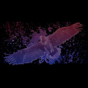 Space Adler