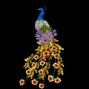 Pfaut Blumen