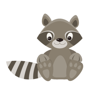 Waschbär Raccoon racoon cute baby animals