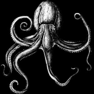 Oktopus - Kraken - gezeichnet