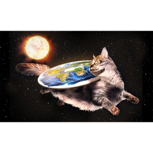 Flache Erde mit Katze