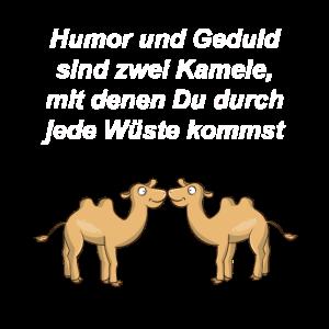 Kamele Spruch Humor