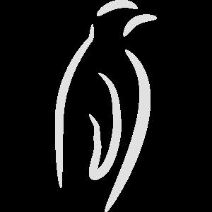 Pinguin Strichzeichnung (weiße Zeichnung)