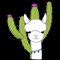 Alpaka Kaktus Anden