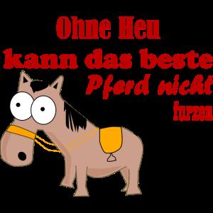 Ohne Heu kann das beste Pferd nicht Furzen