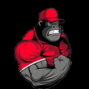 Fitness Gorilla
