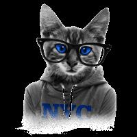 NYC Katze mit Brille