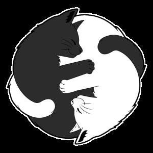 Schönes Katzen Yin Yang T-Shirt