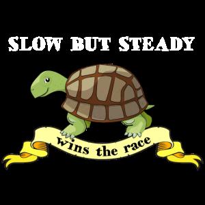 Langsam aber stetig