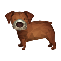 polygon hund