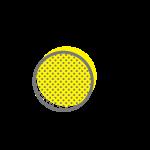 L'œuf sur le plat
