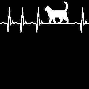 Katze Katzenfreund Geschenk Geschenkidee