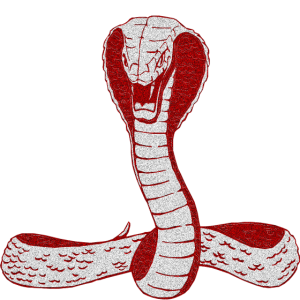 Snake Cobra Graphic