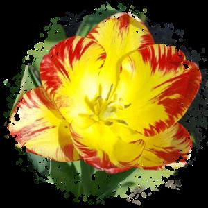 Blume Pixelzerfall