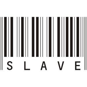 slave vektor gross