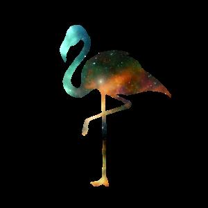 Flamingo Vogel Universum