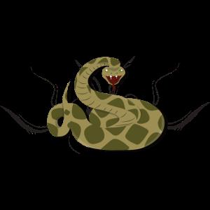Giftige Schlange Giftschlange Viper Gift giftig