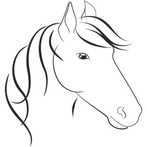 Pferdkopf mit Maehne Horse