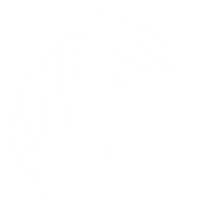 Pferdekopf mit Maehne Horse