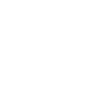 Schneeflocke, Blume, Mandala, Geschenk (weiß)